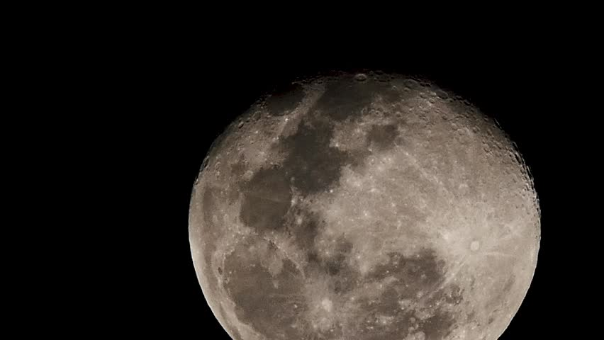 The full moon sees the traces of the oaks.   Shutterstock HD Video #1009359746