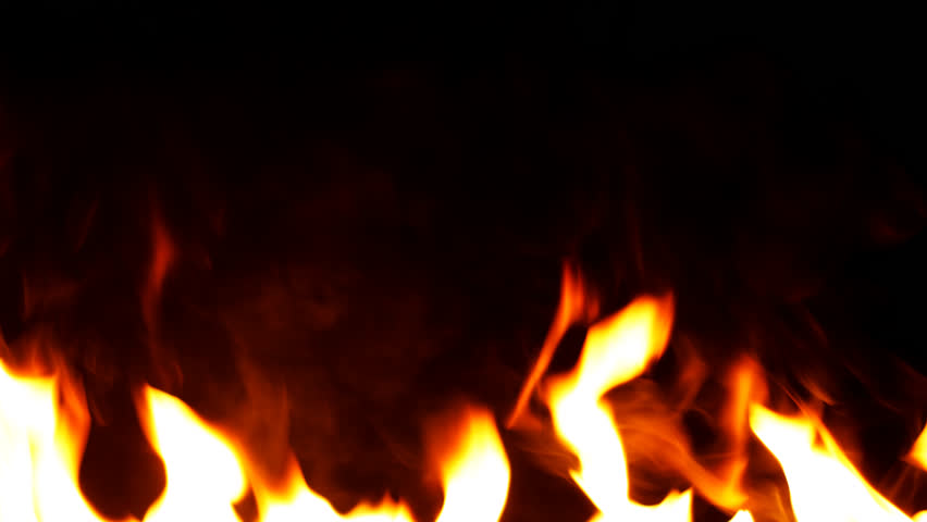Fire Flames Igniting And Burning - Slow Motion. A line of real flames ignite on a black background. Real fire. Transparent background. PNG + Alpha #1009379528