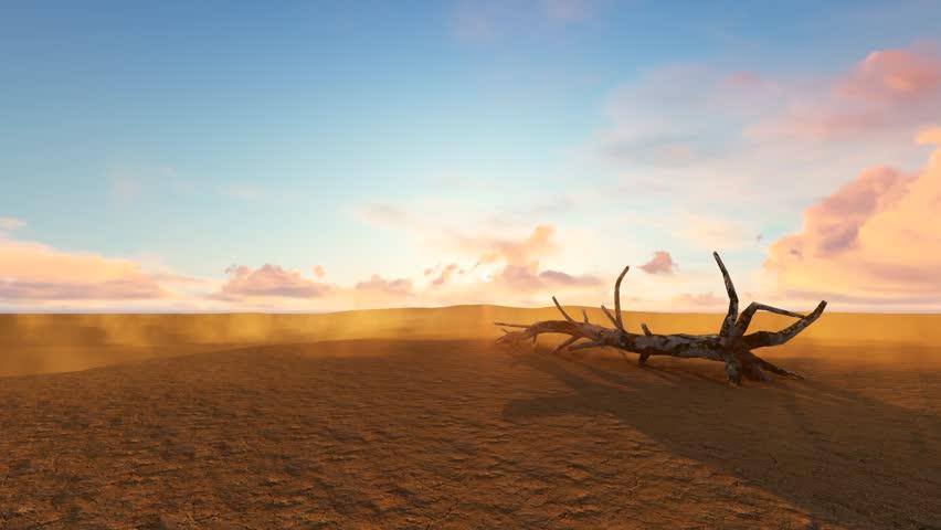 sunset in desert with light wind