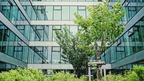 Lush green plants in a landscaped garden in front of a modern glass fronted office block blowing in the wind.