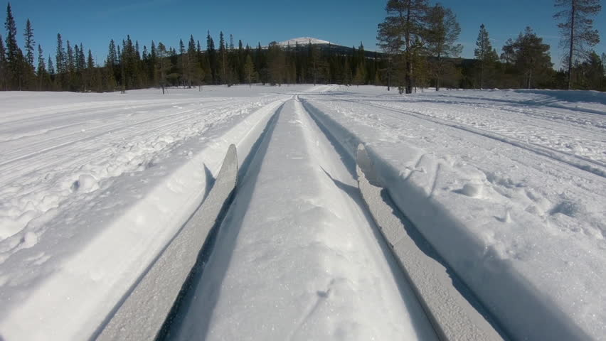Cross country skiier going downhill on a track. POV, filmed from a low angel.