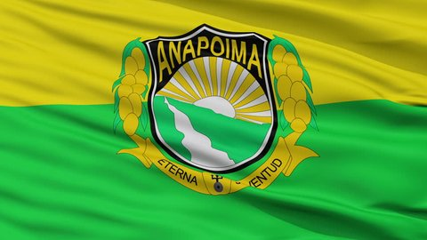Ado Den Haag Flag Is Stock Footage Video 100 Royalty Free 1009512635 Shutterstock