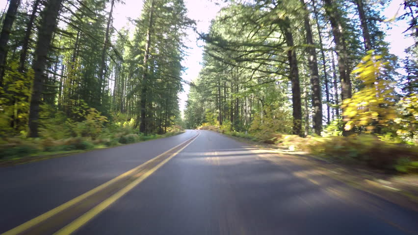 Driving Down Empty Road, During Autumn In Oregon, Usa