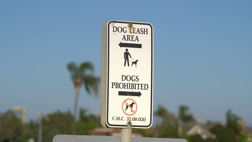 Professional video of dogs prohibited and dog leash area sign in 4k slow motion 60fps  | Shutterstock HD Video #1010001182