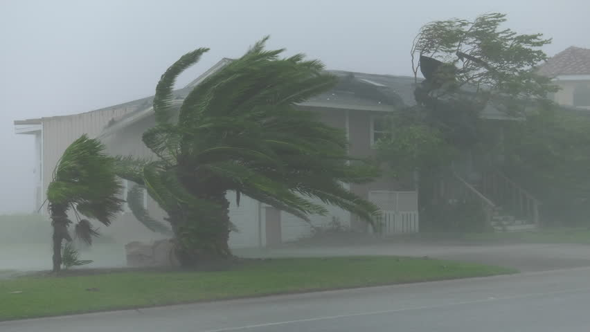 Rockport, TX/US - August 26, 2017 [Major Hurricane Harvey making landfall in Rockport, Texas. Hurricane winds, storm surge flooding along the coastal homes. Houses and palms in strong winds and rain.]