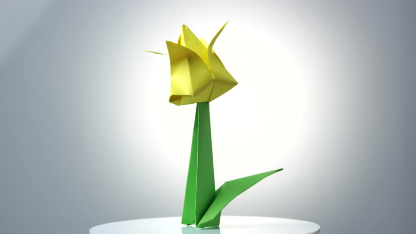 How to Make an Origami Tulip Flower & Stem | 480x852