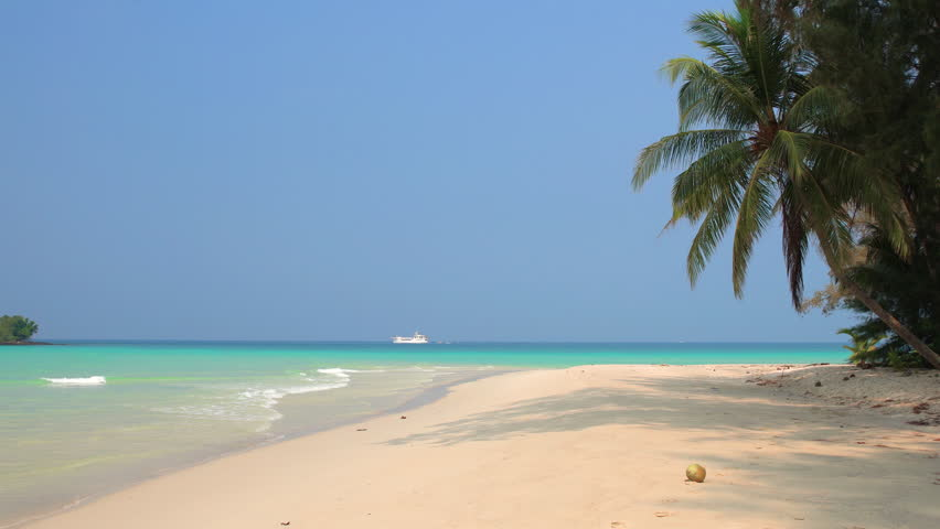 Tropical beach in sunny day   Shutterstock HD Video #1010480849