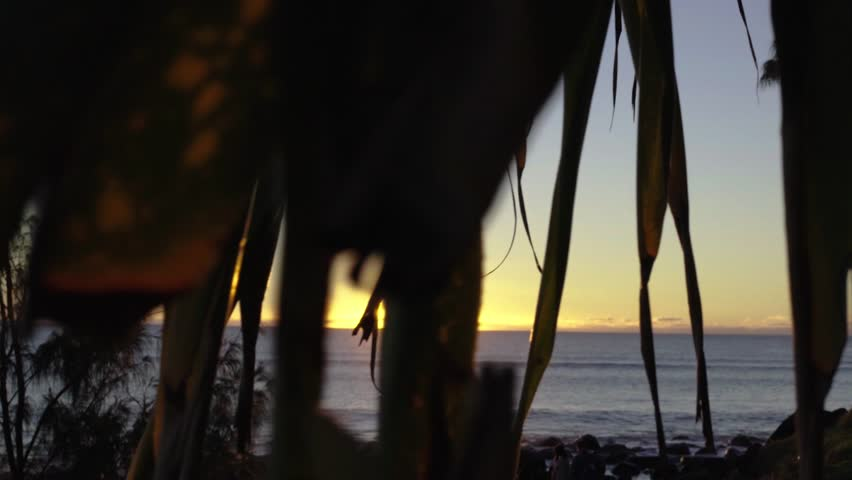 Sunrise creating lens flare at Burleigh Heads beach on the Gold Coast Australia point of view peaking in and out of tree leaves