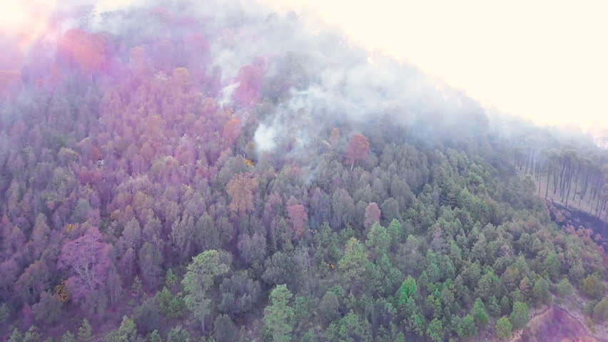 Smoking hill because of fire in Mexico | Shutterstock HD Video #1010604635