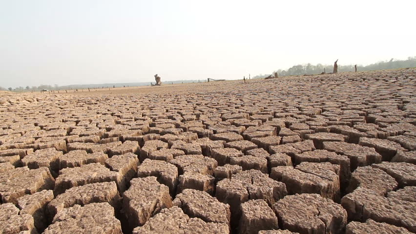 Water crisis, River dried cause Drought.  Climate change at Asia on summer season | Shutterstock HD Video #1010617925
