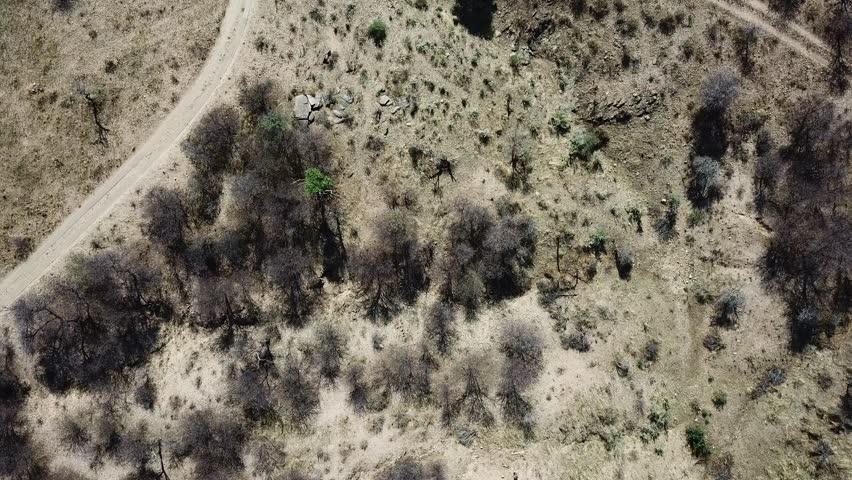 Top view over African desert | Shutterstock HD Video #1010631080