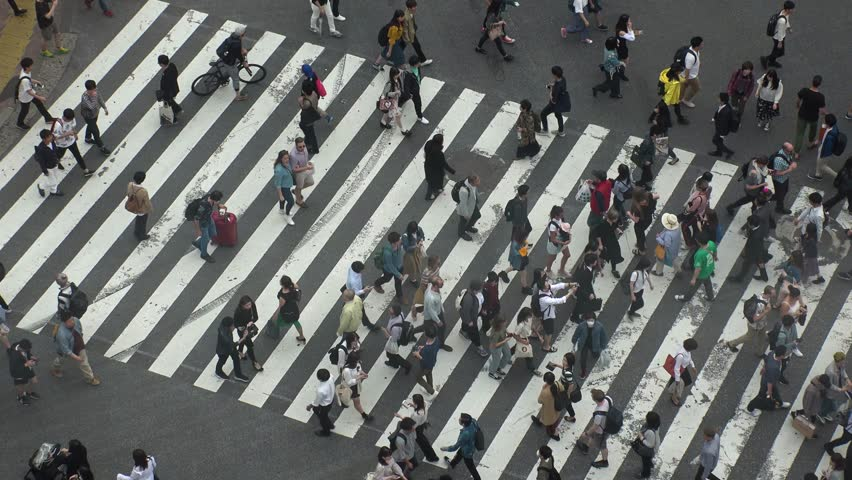 SHIBUYA,  TOKYO,  JAPAN - CIRCA MAY 2018 : Scenery of SHIBUYA around big scramble crossing in summer.   Shutterstock HD Video #1010657735