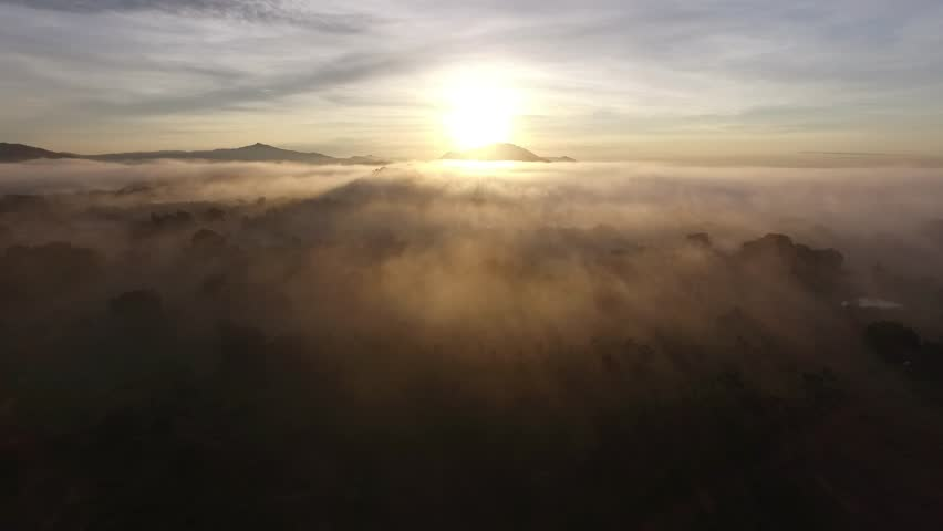 mist in the morning, flight through the clouds | Shutterstock HD Video #1010677787