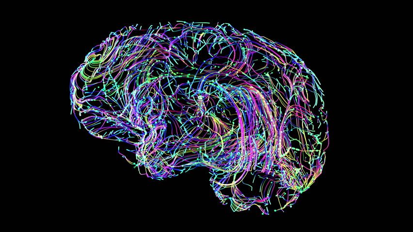 Brain Connections Colorful Stock Footage Video (100% Royalty-free)  1010776790 | Shutterstock