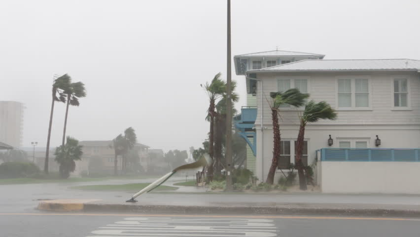 A Sign Whips Around In Hurricane #1010925998