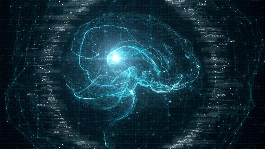 Futuristic Brain Scan. 4K UHD animation | Shutterstock HD Video #1010930453