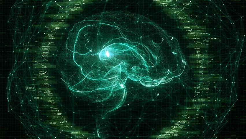 Futuristic Brain Scan. 4K UHD animation | Shutterstock HD Video #1010930459