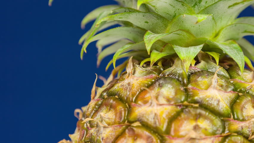 Pineapple movement and close rotation macro shoot frame
