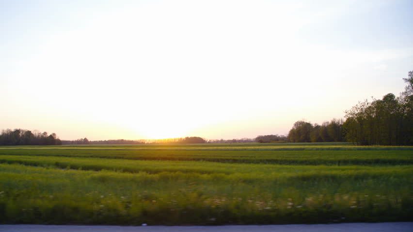 Car side window view driving around flat landscape countryside at sunset 4K. Wide view of the landscape in focus while driving along a big green lawn with the sunset in the background. | Shutterstock HD Video #1010999762