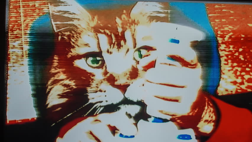 A cool cat playing retro computer arcade game with a joystick. this version has intentional overlayed video distortion and glitch effects