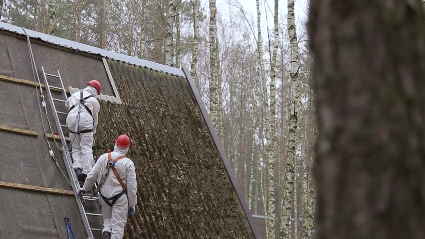 Three laborers safely re sheets of asbestos material from the roof of a rural home in a forest