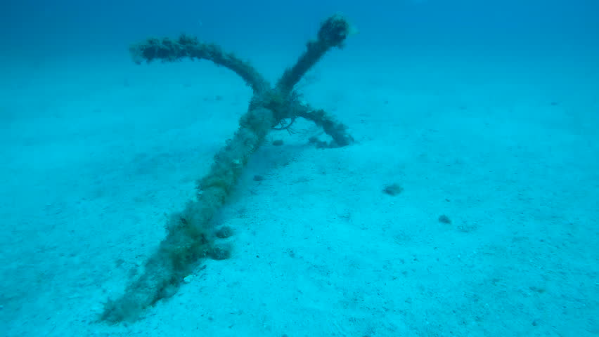 Old weed-covered anchor lying on sea bottom, shipwreck remains under water   Shutterstock HD Video #1011214976
