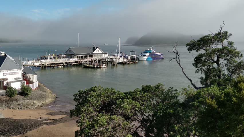 Motion Time lapse, Paihia wharf ferry going back and forth as tourists start the day. | Shutterstock HD Video #1011292682