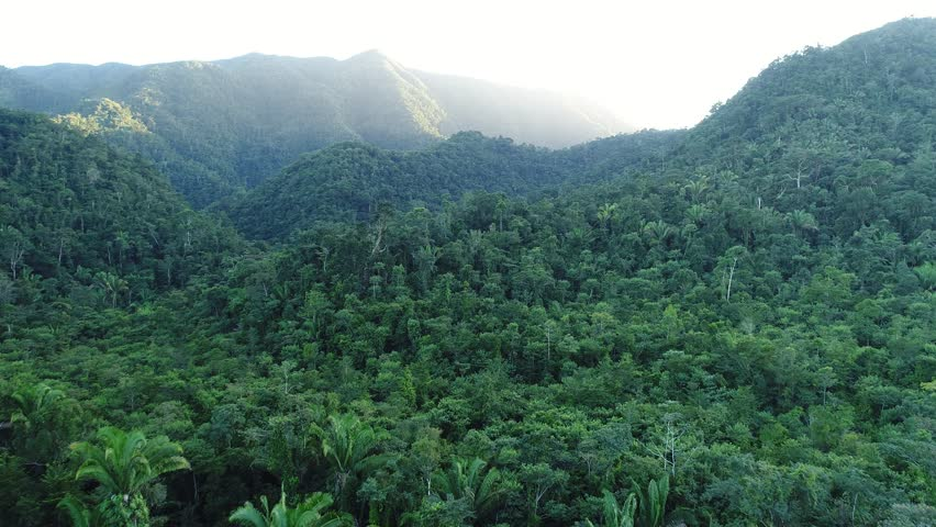 Flight over Mayan Mountains in Central American Jungles