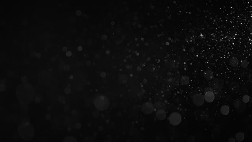 Natural Organic Dust Particles Floating On Black Background. Dynamic Dust Particles Randomly Float In Space With Slow Motion. Shimmering Glittering Particles With Bokeh. Real White Particles In Air. #1011848270