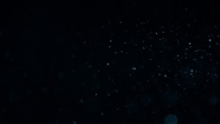 Natural Organic Dust Particles Floating On Black Background. Dynamic Dust Particles Randomly Float In Space With Fast And Slow Motion. Shimmering Glittering Colored Particles With Bokeh In The Air. #1011848303