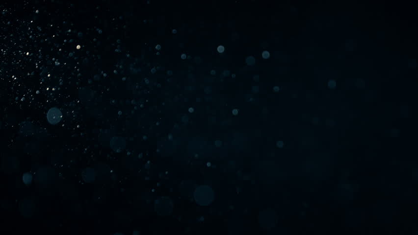 Natural Organic Dust Particles Floating On Black Background. Dynamic Dust Particles Randomly Float In Space With Slow Motion. Shimmering Glittering Particles With Bokeh. Real Colored Particles In Air. #1011848312