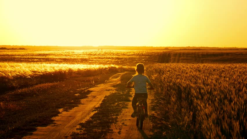 Biker-girl at the sunset on the meadow. Child enjoying freedom on bike on wheat field at sunset. Girl on a bike in the countryside in sunset time. | Shutterstock HD Video #1012071470
