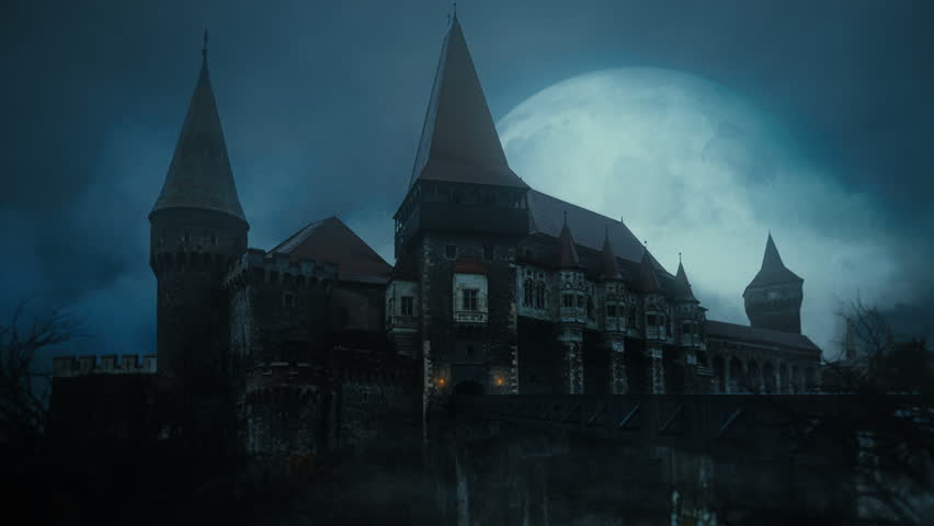 Old medieval castle at night with a big full moon in background and crows flying over   Shutterstock HD Video #1012223702