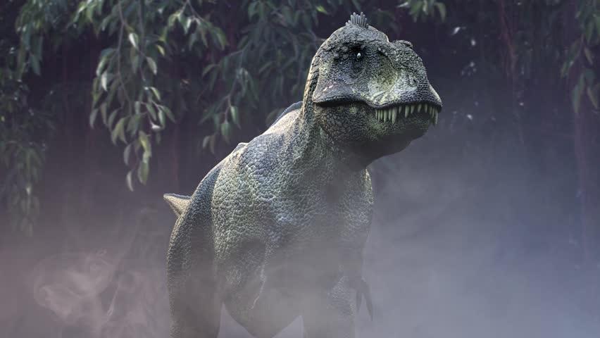 Animate a running dinosaur  Tyrannosaurus Rex 3d render in the jungle   Shutterstock HD Video #1012228994