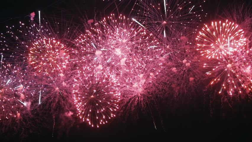 Firework on night sky | Shutterstock HD Video #1012352495