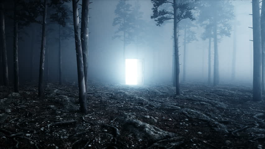 Glowing door in fog night forest. Light portal. Mistic and magic concept. Realistic 4k animation.