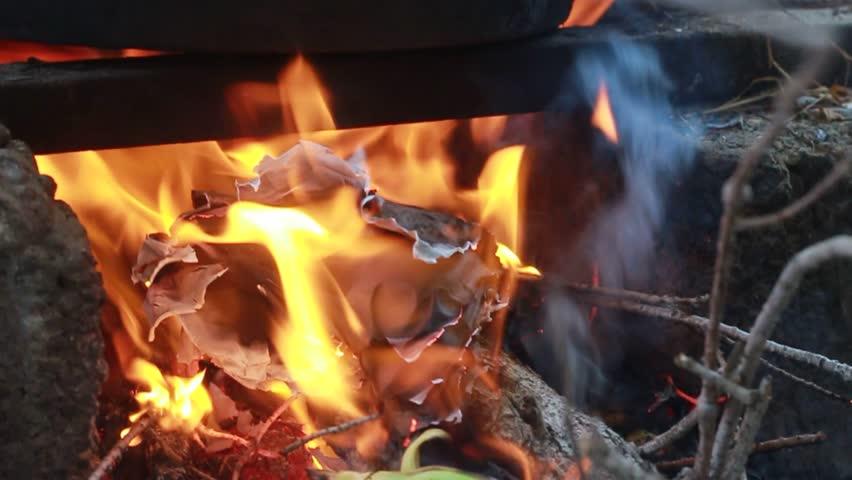Close up bonfire flames of camping fire. | Shutterstock HD Video #1012386668