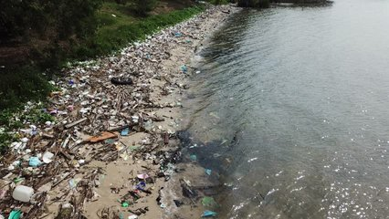 Plastic pollution on beach and in ocean