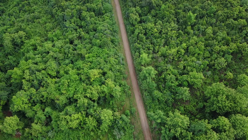 Aerial Drone - Dirt Road & Dense Jungle in Laos | Shutterstock HD Video #1012408331