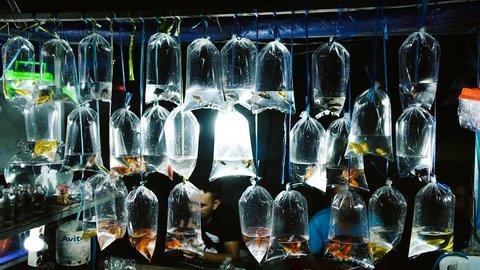 BALI, INDONESIA - 10 JUNE 2018: Golden fish in plastic bags at night market