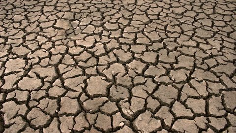 Dry cracked ground drought