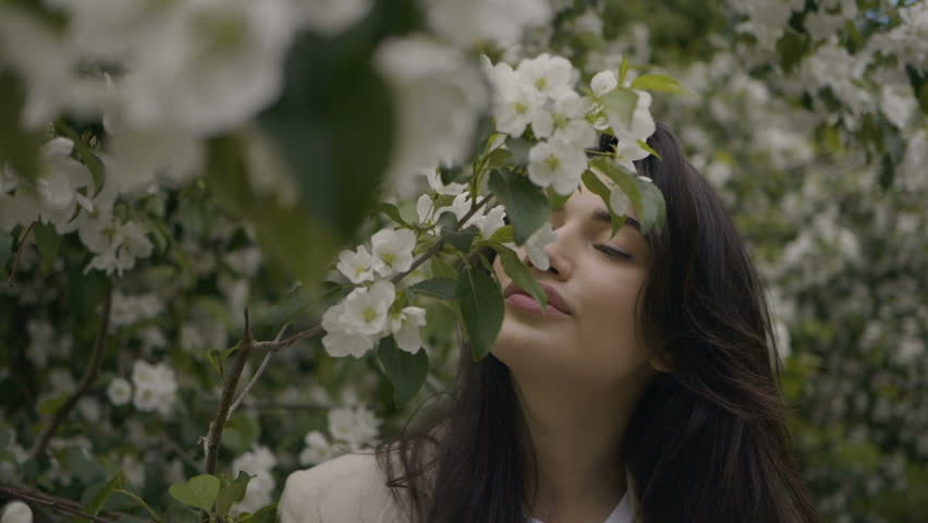 Girl is smelling the branch