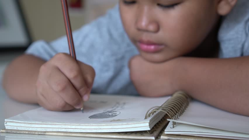 Portrait Asian Student boy elementary lay doing his homework on notebook while learning study at home. Studying in Education concept | Shutterstock HD Video #1012714190
