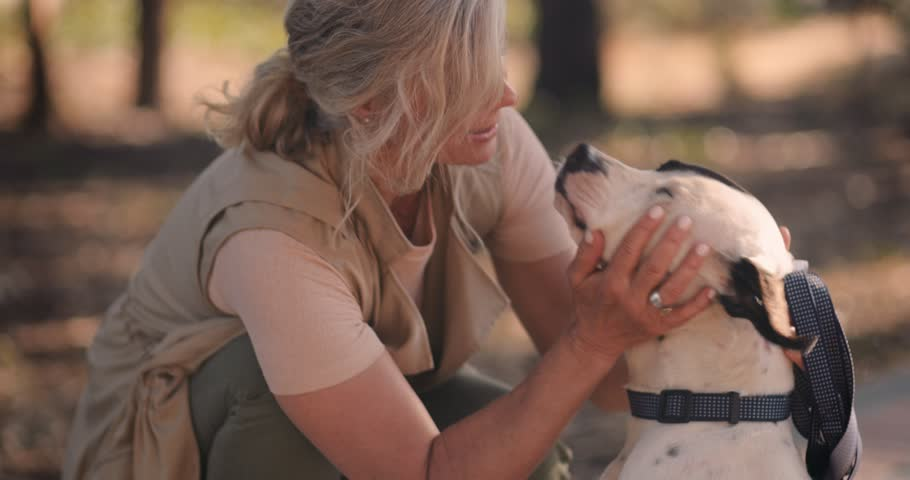 Loving senior female pet owner petting and hugging happy dog on evening walk in park