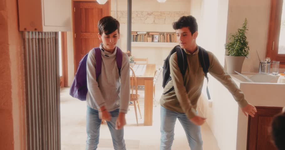 Happy young brothers returning from school and dancing the viral floss dance together at home | Shutterstock HD Video #1012743524