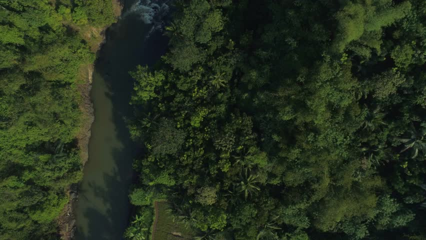 Aerial View of River Across a Beautiful Dense Forest in the Sunrise, Ciamis, West Java Indonesia, Asia | Shutterstock HD Video #1012828115