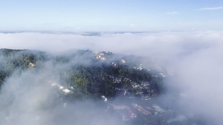 Aerial view of the morning fog over small new zealand town, paihia in the bay of islands. | Shutterstock HD Video #1012829126