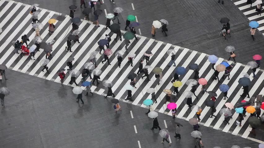 People Walking in Umbrella | Shutterstock HD Video #1012833788
