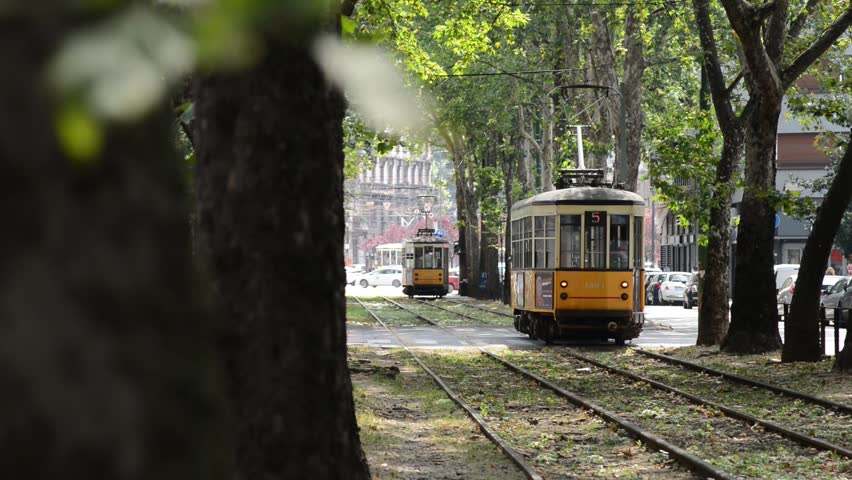tree-lined avenue of the city with characteristic yellow tram passing through Royalty-Free Stock Footage #1012855706