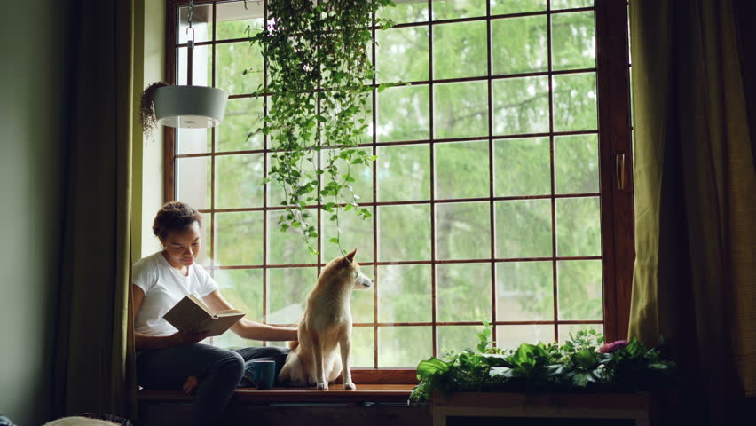 Attractive African American girl student is reading book and stroking her purebred dog sitting on window ledge in modern apartment. Hobby, animals and interior concept. #1012911779